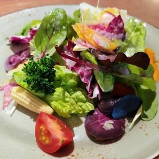 20品目の健康サラダ