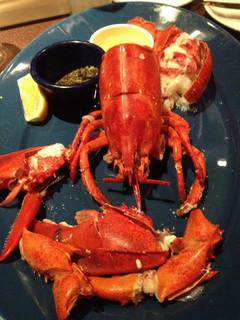 ライブロブスター/スチーム Live Lobster <Steam>