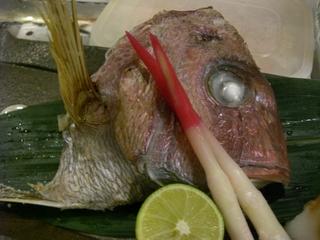 天然真鯛の天然塩焼き