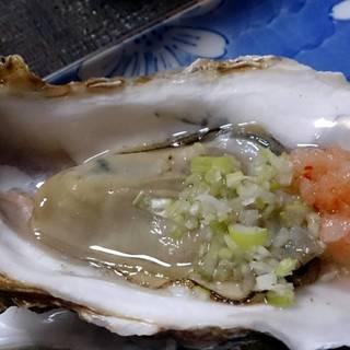宮城産生牡蠣