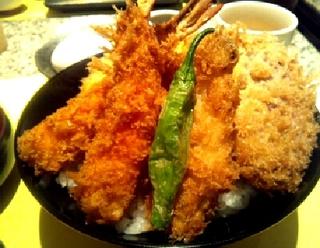 限定10食 エビカツ丼