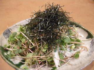 蕎麦の芽と長芋のサラダ