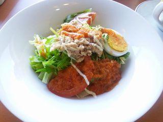 ツナとフレッシュ野菜のサラダ