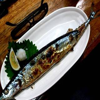 生秋刀魚塩焼