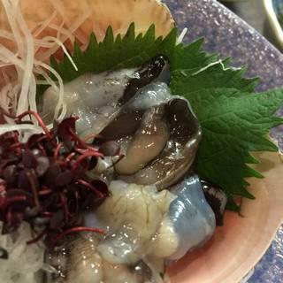 殻付きトリガイ刺身
