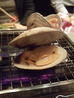 活白ハマグリ(本ビノス)