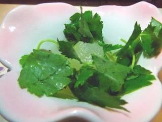 冬瓜と三つ葉の小鉢