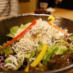 湯葉豆腐としらすのサラダ
