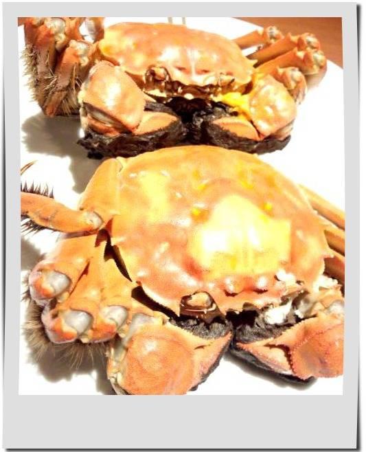 上海蟹 上海蟹入り小籠包