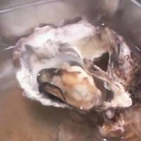 牡蠣のガンガン蒸し