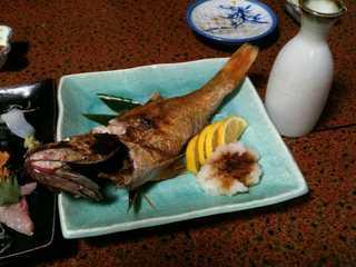 本日の地魚