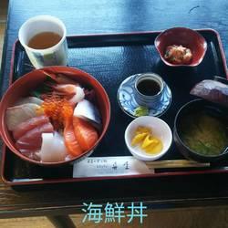 舟屋の海鮮丼