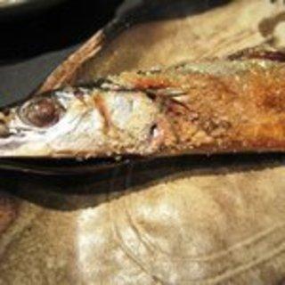 焼き塩秋刀魚
