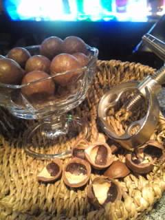殻付きマカダミアナッツ