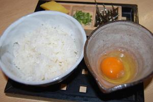 コーチン 卵かけご飯