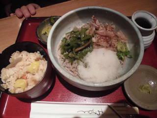 山菜おろし定食