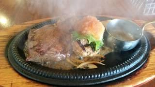 ステーキ&おろしハンバーグ