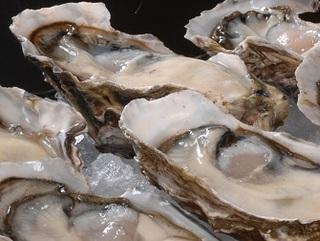 ニュージーランド牡蠣