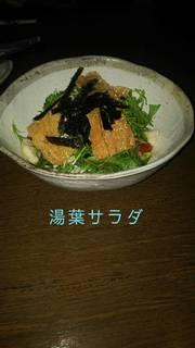 カリカリ揚げ湯葉サラダ