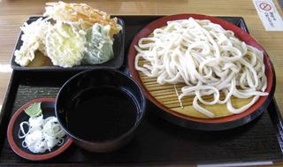 天ぷら付き うどん