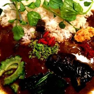 薬膳野菜カレー