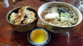 おろしそば+ミニ天丼(820円)