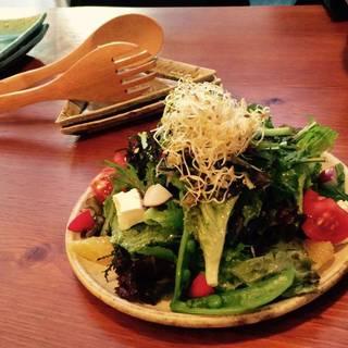 えんちゃん農場 横浜野菜のサラダ