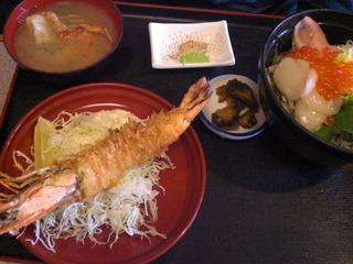春の3色丼と海老フライセット