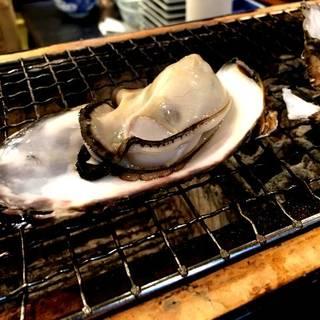 牡蠣殻付き