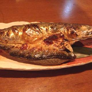 関鯖の塩焼き