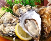 仙鳳趾の牡蠣