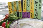 有機野菜&厳選鮮魚